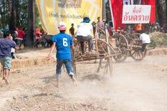 Festival di corsa del carrello della mucca in Tailandia Fotografie Stock