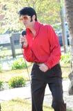 Artista di tributo di Elvis Fotografie Stock Libere da Diritti