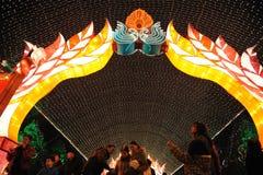 Festival di lanterna cinese di nuovo anno 2012 Fotografie Stock