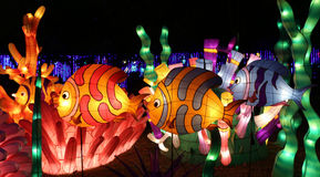 festival 2015 di lanterna di Chengdu in porcellana Fotografia Stock