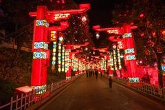 Festival di lanterna internazionale del dinosauro di Zigong Fotografie Stock Libere da Diritti