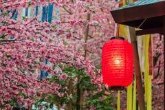 Festival di Tanabata Fotografia Stock
