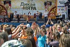 Festival di una menta selvaggia di musica folk Fotografie Stock Libere da Diritti