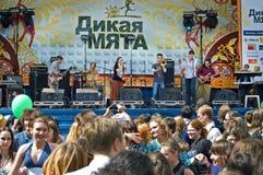Festival di una menta selvaggia di musica folk Immagini Stock