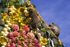 Festival do bufete do macaco em Tailândia Imagem de Stock