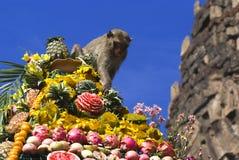 Festival do bufete do macaco em Tailândia Imagem de Stock Royalty Free