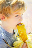 Festival do milho Foto de Stock Royalty Free