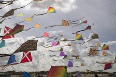 Festival do papagaio Imagens de Stock Royalty Free