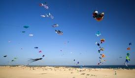 Festival do papagaio de Fuerteventura Fotos de Stock Royalty Free