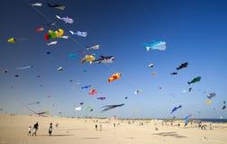 Festival do papagaio de Fuerteventura Fotografia de Stock