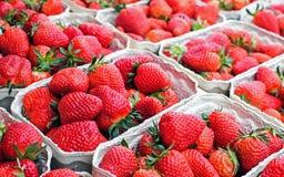 Festival do tarte de morangos Imagem de Stock