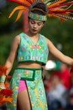 Festival do verão indiano imagem de stock royalty free