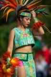 Festival do verão indiano fotos de stock