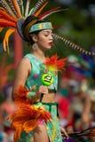 Festival do verão indiano fotografia de stock royalty free