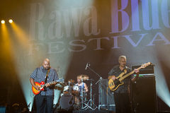 Festival 2014 dos azuis de Rawa: Shawn Holt & as lágrimas Fotos de Stock Royalty Free