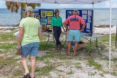 Festival esquecido da tartaruga de mar da costa imagens de stock royalty free