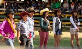 Festival et bétail de rodéo luttant Images libres de droits