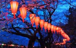 Festival för Körsbär-blomning visning (O-Hanami) Arkivbild