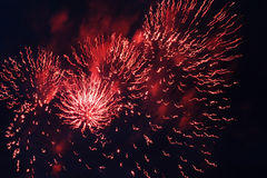 Festival firework. Much flashes to form miscellaneous and colour in the night Royalty Free Stock Photos