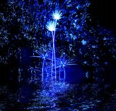 Festival of fireworks. Celebratory firework. Firework reflection in water Stock Photography
