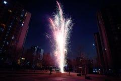 Festival fireworks Royalty Free Stock Photo