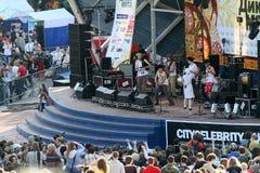 Festival of folk music Wild Mint Royalty Free Stock Photography
