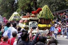 Festival grande do flutuador da flor imagens de stock