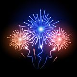 Holiday firework. Independence day Stock Image