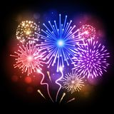 Holiday firework. Independence day. Festival holiday firework. Independence day Royalty Free Stock Images