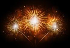Holiday firework. Independence day. Festival holiday firework. Independence day Royalty Free Stock Photography