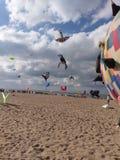 Festival kites stock photo