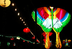 Festival of lanterns royalty free stock photography