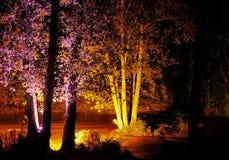 Festival ligero Foto de archivo