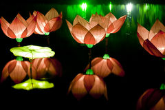 Festival lotus lanterns Stock Photo