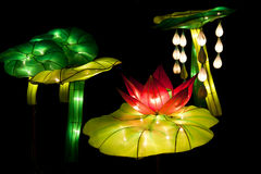 Festival lotus lanterns Royalty Free Stock Image