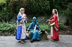 festival medeltida New York Arkivbilder