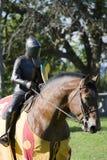 Festival medieval. Cavaleiros no cavalo Imagens de Stock