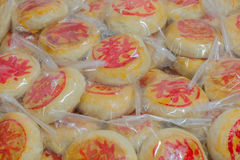 Festival moon cake Stock Images