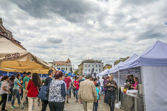 Festival mussels 2017 Stock Photography