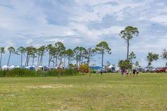 Festival olvidado de la tortuga de mar de la costa imagenes de archivo