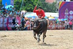 Festival que compite con del búfalo Imágenes de archivo libres de regalías