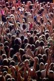 Festival in sera Immagini Stock Libere da Diritti