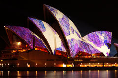 Festival vívido iluminado teatro da ópera de Sydney Fotografia de Stock Royalty Free