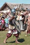 festival viking Royaltyfri Foto