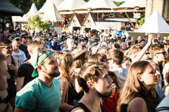Festival visitors Royalty Free Stock Photos