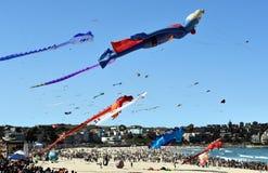 Festival of the Winds, Bondi Beach Sydney Stock Photos