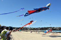 Festival of the Winds, Bondi Beach Sydney Stock Photography