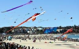 Festival of the Winds, Bondi Beach Sydney Royalty Free Stock Images