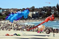 Festival of the Winds, Bondi Beach Sydney Royalty Free Stock Photos
