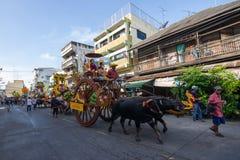Festivalbuffels het rennen Stock Afbeeldingen